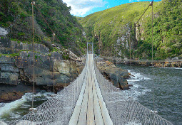 Visit Suspension Bridge on your trip to Tsitsikamma National park